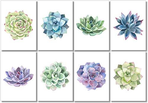 Succulents Wall Art - Watercolor Cactus Prints - (Set of 8) - 5x7 - Unframed - Botanical Decor