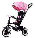 Sunbaby Triciclo Qplay Rito 4 en 1 con accesorios, plegable, claraboya,...