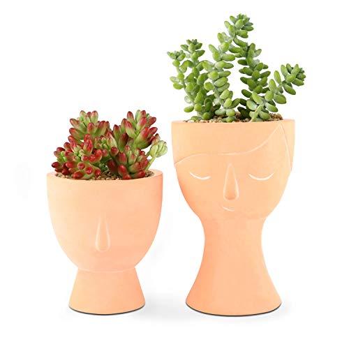 T4U 10cm Gesicht Zement Sukkulenten Töpfe 2er-Set, Klein Mini Beton Blumentopf Übertopf für Kakteen Moos Zimmerpflanzen