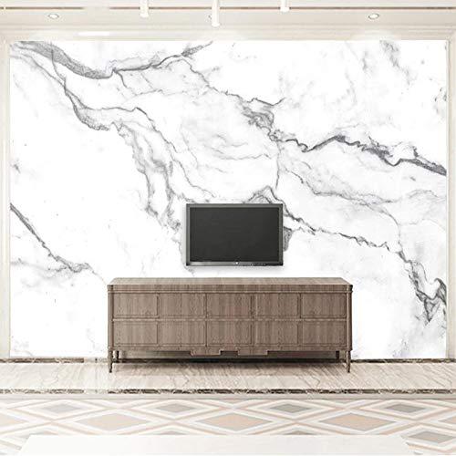 DZBHSCL 4D Behang muurschilderingen, modern, minimalistisch zwart en wit marmer patroon groot kunstdruk fotobehang poster voor huis woonkamer bank Tv achtergrond veranda slaapkamer muur decor 104in×168in 260cm(H)×420cm(W)