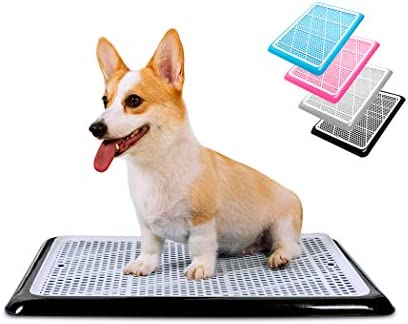 Pet Awesome Dog Potty Tray Puppy Pee Pad Holder 25 x20 Indoor Wee Training for Small and Medium product image