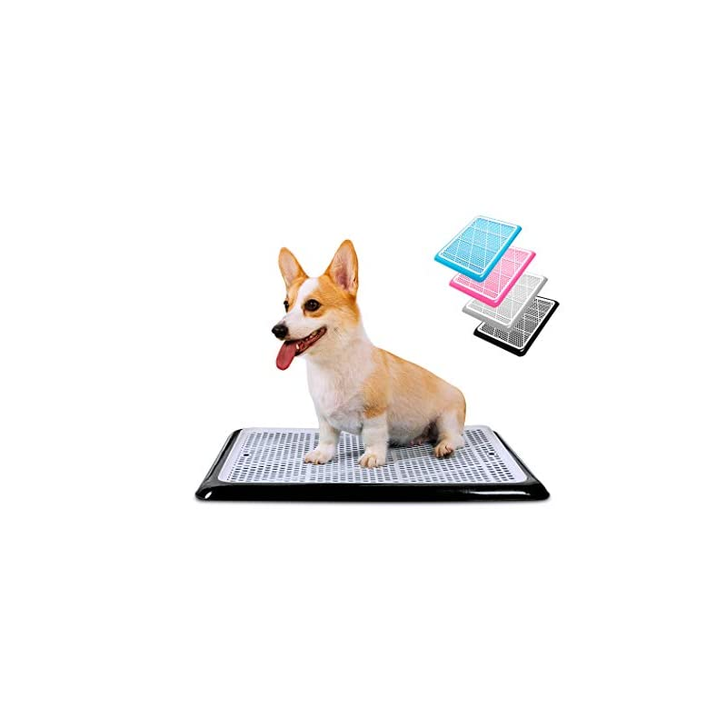 """dog supplies online pet awesome dog potty tray / puppy pee pad holder 25""""x20"""" indoor wee training for small and medium dogs"""