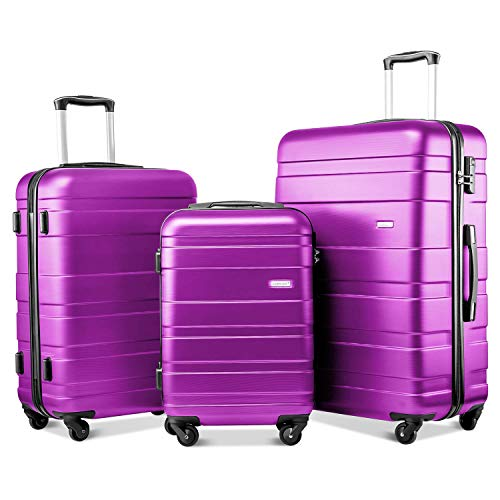 Nishore Set of 3 Light Weight Hardshell 4 wheel Travel Trolley Suitcase Luggage Set Holdall Case-20/24/28 inch (Purple)