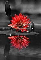 番号でペイント Diy 赤いバラの花の植物 の絵の具 ペイントキット 大人ンティング アクリル絵画 アートクラフト ホームウォールデコレーショ 40X50Cm フレームレス