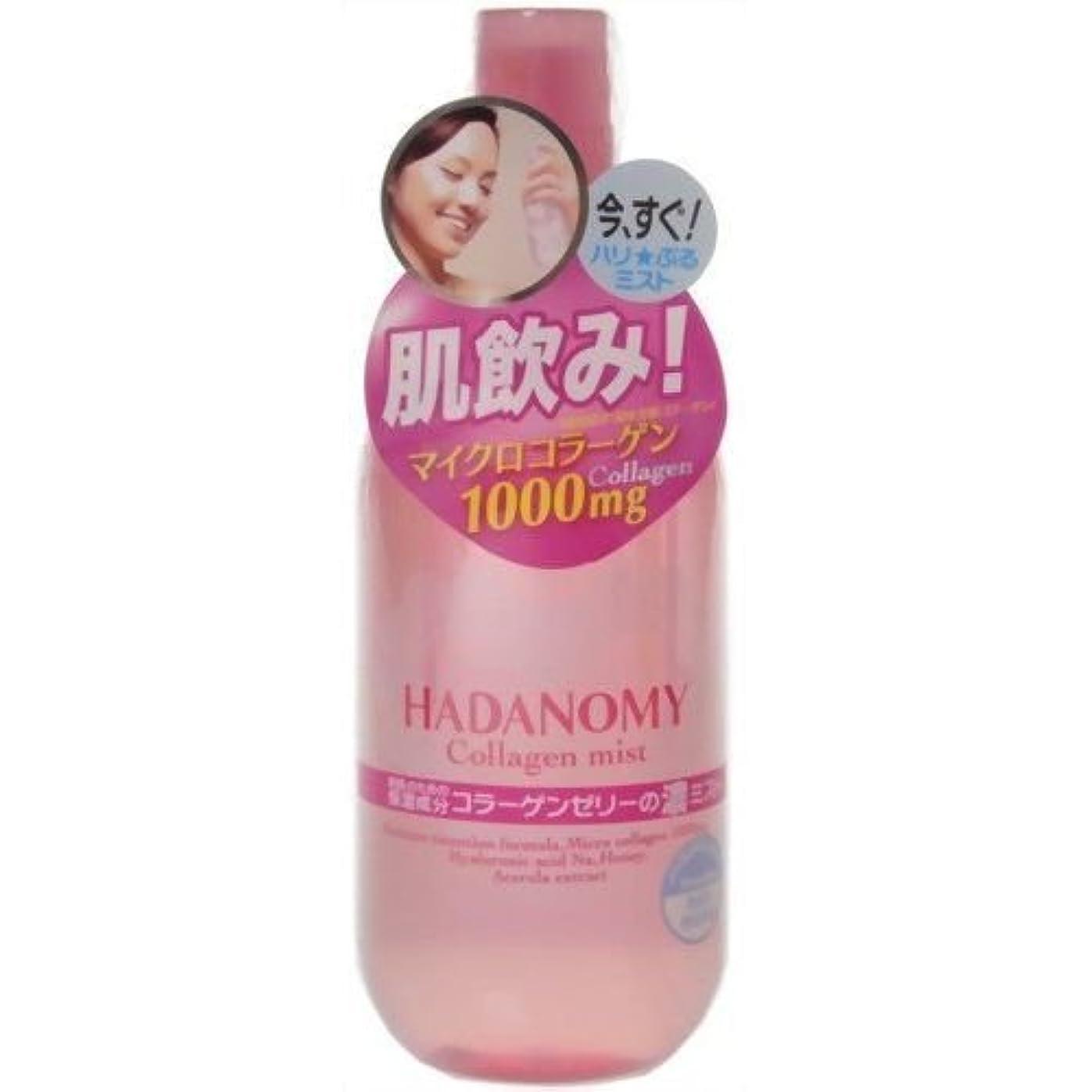 できるすべきコンセンサス【サナ】ハダノミー 濃ミスト 250ml