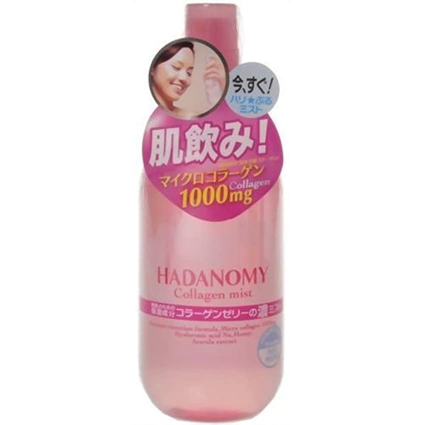 移行サスティーンおもしろい【サナ】ハダノミー 濃ミスト 250ml