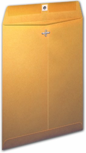 Ampad Clasp Envelope, Brown Kraft, 9 x 12, 100-Box (73108)