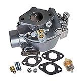 Fenteer Carburador para Tractor IH Farmall 352376R92 373957R91 52499DB 69401D Piezas de Equipo, Construcción de Metal Resistente