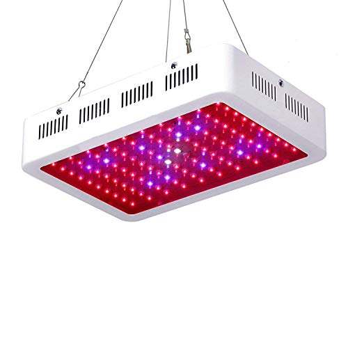 1000W LED Grow Light Full Spectrum Galaxyhydro Series Plant Light for Indoor Plants with IR for Greenhouse, Hydroponics, Seedlings, Veg and Flower