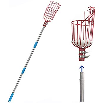INFLATION 5.5FT Extendable Fruit Tree Picker - Large Capacity Fruit Basket with High Reach Telescoping Pole, Apple Orange Pear Cherry Lemon Picker Tool(Give Away Storage Bag)