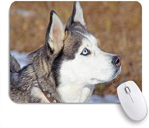 Gaming Mouse Pad Rutschfeste Gummibasis, Polar Stare Sibirische Rasse Schlitten Husky Wolf Porträt Tiere Wildlife Dog Nature Head, für Computer Laptop Schreibtisch