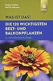 Was ist das? Die 120 wichtigsten Beet- und Balkonpflanzen: Beet- und Balkonpflanzen spielend leicht erkennen