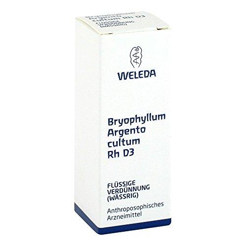 Weleda Bryophyllum Argento cultum Rh D3, 20 ml Dilution