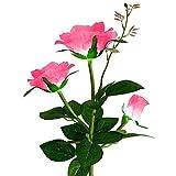 Bingdong Lámpara solar del césped de la flor de la rosa con 3 brotes para el jardín decorativo al aire libre paisaje luz impermeable inserción LED 80cm