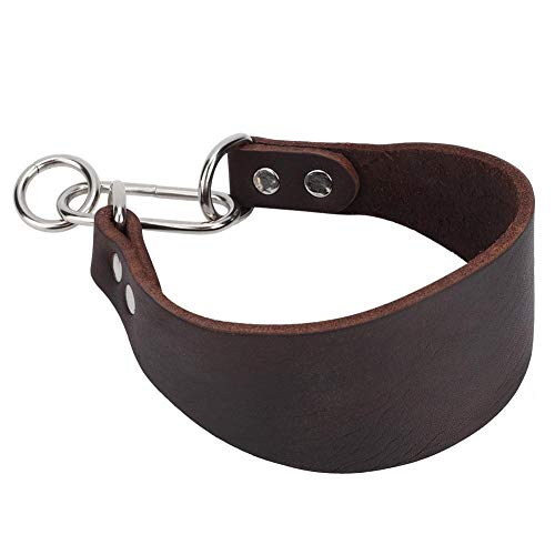Collar Whippet marca Conlense