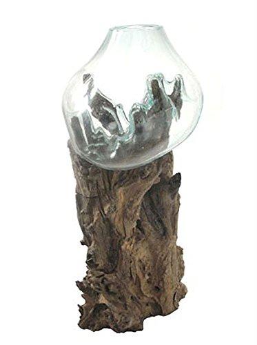 SAWA Glasvase Bodenvase 70 cm auf Wurzelholz spezielle Vase mit Holz Wurzel