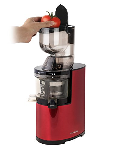 Masticating juicer,Slow Juice Extractor for Higher Nutrient and Vitamins, Slow Masticating Juicer with Quiet Motor and Reverse Function,Easy to Clean Juicer for All Fruits and Vegetables