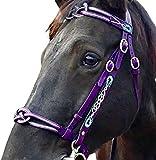 wsbdking Brideles ecuestres ingleses, espesos de cuero de cuero brida con renoves de halter acolchado suave y desmontable, bridle de caballos para entrenamiento de equitación al aire libre, tamaño com