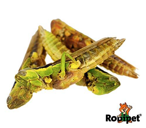 Rodipet® Grashüpfer Protein Snack 50g