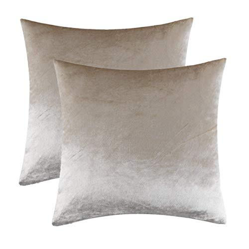 GIGIZAZA Kissenbezug 50x50 cm Kissenbezüge Creme Samt Kissenhülle Zierkissenbezug Dekokissen für Sofa Schlafzimmer Wohnzimmer 2er Set