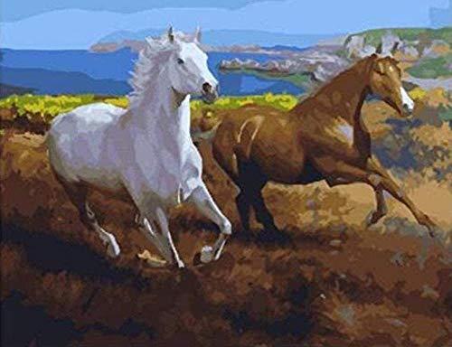 NC56 DIY Zwei Pferde am Meer Bild Gemälde nach Zahlen Kits Abstrakte Ölgemälde Zeichnung Bilder auf Leinwand 40X50Cm Rahmenlos