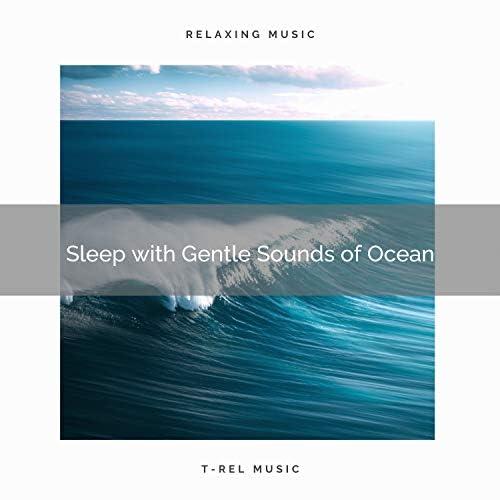 Wave Sleep, 101 Nature & Nature Songs Nature Music