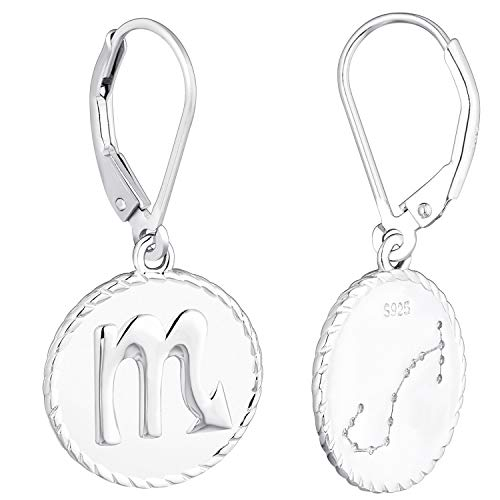 YL Silber Skorpion Ohrringe-925 Sterling Silber CZ Horoskop Sternzeichen 12 Konstellation Ohrringe für Frauen und Mädchen