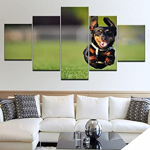 JINGMEI Canvas Painting HD Picture 5 Combinación De Pinturas Colgantes Perro Negro Corriendo Decoración De La Pared del Hogar Arte Regalo Cartel Paisaje Enmarcado 150X80Cm