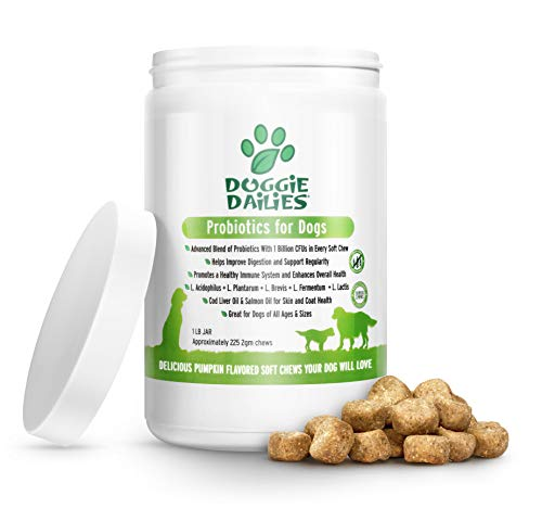 Doggie Dailies Probiotics for Dogs, 225 Soft Chews, Advanced Dog Probiotics with Prebiotics, Promotes Digestive Health, Supports Immune System and Overall Health (Pumpkin)