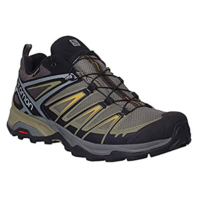 Salomon Men's X Ultra 3 GTX Hiking Shoes, Castor Gray/Beluga/Green Sulphur, 10