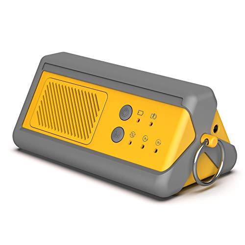 Airthereal PA1K-GO 1000mg/h tragbarer Ozon-Generator - schnurloser, batteriebetriebener Geruchsbeseitiger für Auto, Hotelzimmer, Büros, Badezimmer sowie andere, kleine Räume (gelb-grau)