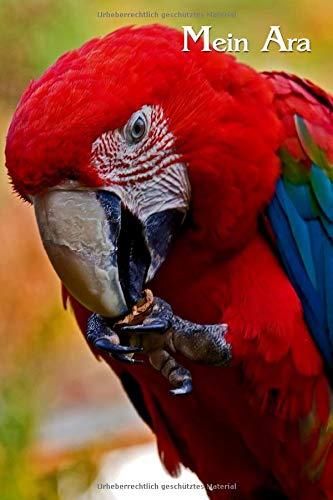 Mein Ara: Hellroter Ara, Ara macao. Tagebuch, Planer, Journal, Notizbuch für Papageienfreunde, Tierfreunde, Vogelkundler. Format A5, 120 Seiten, dezent grau liniert.