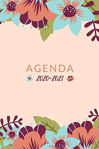 agenda 2020 2021: pour les professeurs des écoles   semainier pour les enseignants du premier degré   année d'enseignement du 1 septembre 2020 au 31 ... suivi des élèves, compte-rendu de réunions