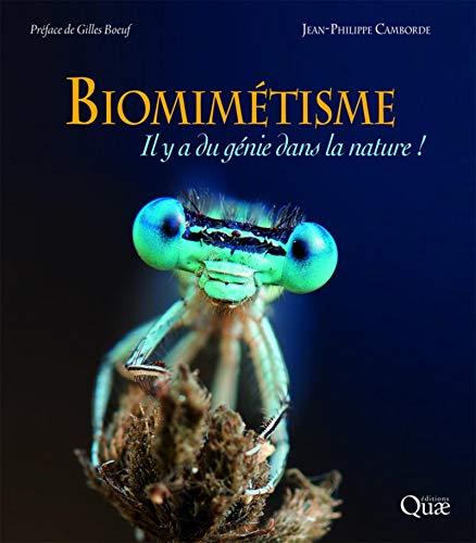 Biomimicry: Mae athrylith ym myd natur!