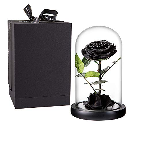 Preserved Rose Black Roses Handmade Preserved Flower Real Rose in Glass Dome, Preserved Roses Never Withered Romantic Gifts for Female, Valentine