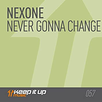 Never Gonna Change (Original Mix)