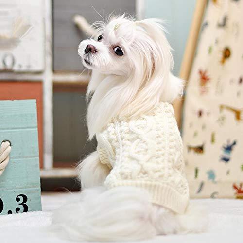 XY Huisdier Sweater Kitten Hond Kleding Coltrui Trui Voor Katten Knitwear, Kleine Honden Kitten Kleding Man En Vrouwelijk, Hoge Stretch, Zacht, Warm