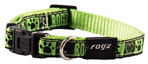 Rogz Fancy Dress 3/20,3 cm Jellybean zijdelingse fashion hondenhalsband, klein, lime sap