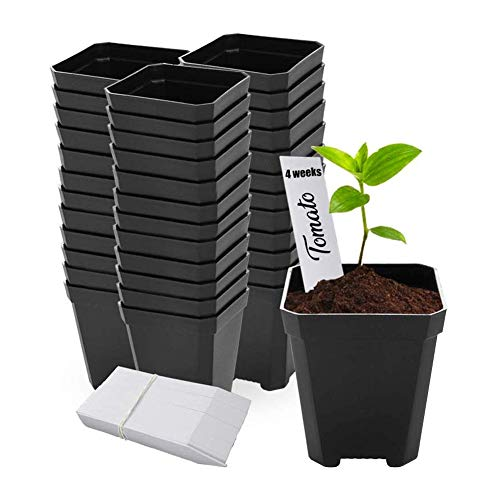 48 pcs Plastic Nursery Pot for Plants 2.75″ Square x 3.25″ Seed Starting/Transplant Plant Containers for Tomatoes Basil Peppers Mint with 48 Label Markers and Drain Holes for Germination with Ebook