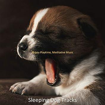 Puppy Playtime, Meditative Music