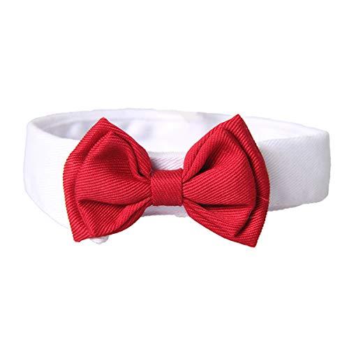 DaMohony Haustier Fliege Halsband Katze Hund Verstellbare Fliege Halsband Krawatte für Katzen Hunde