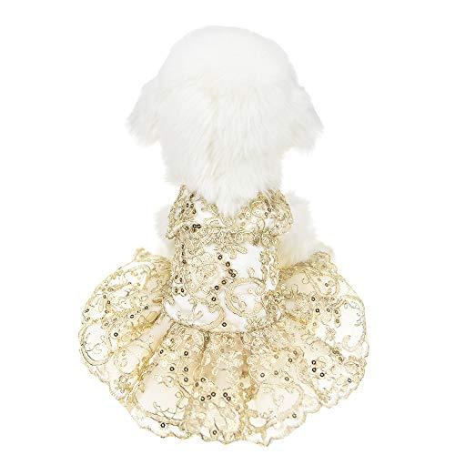 FLAdorepet Goud Kant Hond Bruiloft Feestjurk Tutu Rok Puppy Bruid Kostuum voor Kleine Medium Hond Huisdier Kleding, XL, Goud