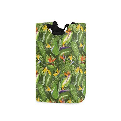 ZOMOY Multifunktionale Faltbarer Schmutzige Kleidung Wäschekorb,Frische brasilianische Wald unberührte Dschungel Paradies tropische Laubblumen,Household Wäschebox Spielzeug Organizer