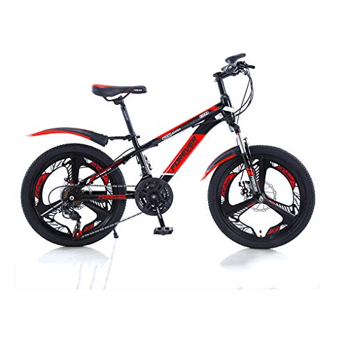 MGW Mountain Bike Mountain Bike 20-inch Boys and Girls, Primary School Students Variable Speed Bikes