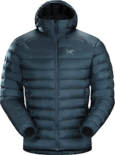 Arc'teryx Cerium LT Hoody Men's (Labyrinth, X-Small)
