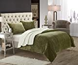 Chic Home 3-Piece Evie Plush Microsuede Sherpa Blanket, Queen, Green