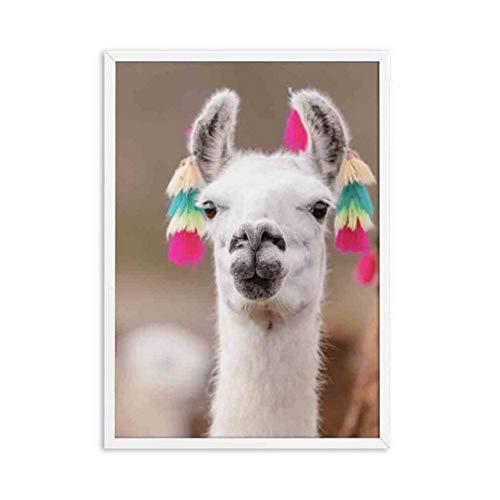 FANGYUAN Nette Nusery Animal Alpaca Kunstdruck und Poster Alpaca Fotografie Leinwand Malerei Bilder Südamerikanische Tier Wandkunst Dekor 50X70Cm No Frame
