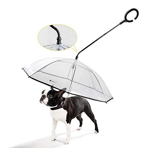 PETEMOO Perro Paraguas con Cuerda para hundegehen al Aire Libre (Nieve/Lluvia)
