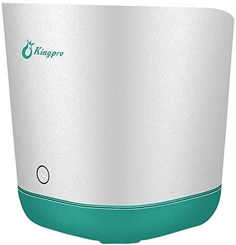 Ozon Obst und Gemüse Waschmaschine - Essen Purifier, Obst Waschmaschine Desinfektion Maschine Multifunktionsfrisch Sauerstoff-Maschine