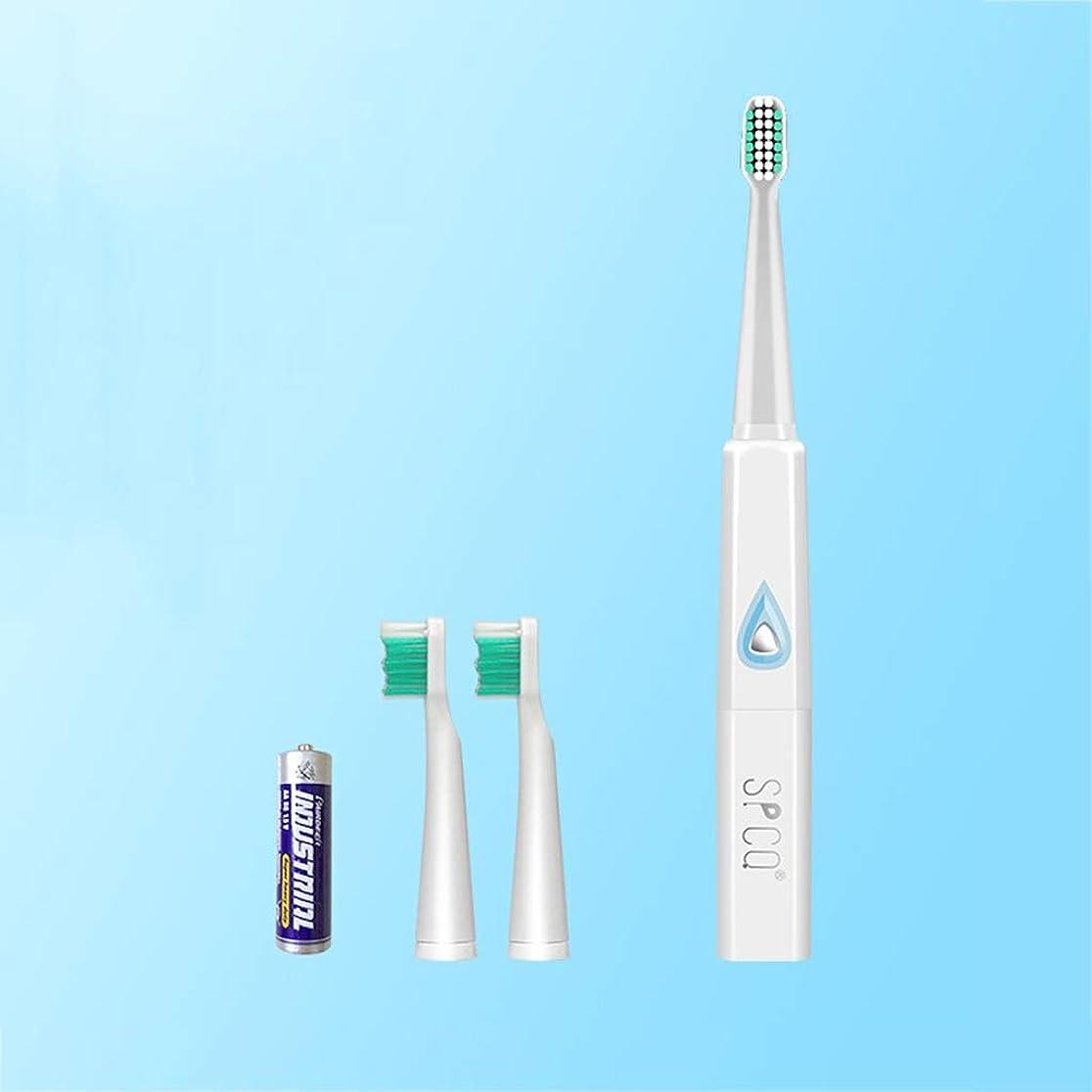 セーブ法律により裂け目電動歯ブラシ 音波の電動歯ブラシの大人の柔らかい毛電池のスマートな自動歯ブラシ3のブラシの頭部 (色 : B)